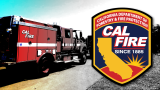 Cal Fire Local 2881 Endorses Marc Steinorth for Assembly