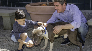 Assemblyman Marc Steinorth hosting pet adoptions at Redlands, Rancho and Devore shelters | Steinorth100